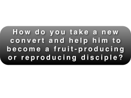 Reproducing Disciple